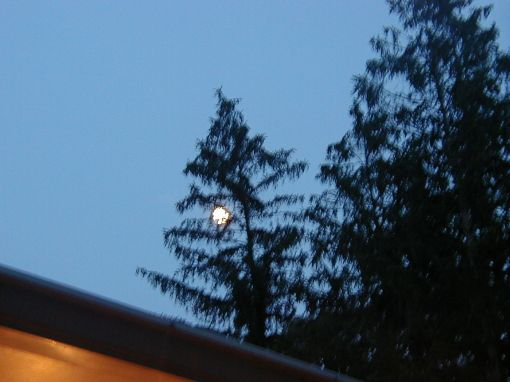 An actual picture taken by me the night of the lunar landing target at the Omega Institute in June 2003 but before the target was revealed the following morning. All rights reserved.